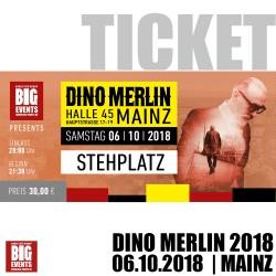 DINO MERLIN Live Konzert 2018 in Mainz Eintrittskarte / Stehplatz Ticket für 1 Person